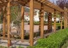 园林景观绿化 防腐木加工制作 凉亭水景 办公室绿植