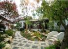 专业园林花园设计铺草坪移栽树木修剪养护 绿植租赁