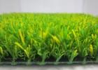 普莱格人造草坪