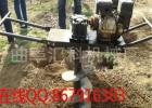 厂家直销小型挖坑机 园林机械设备 种植挖坑机 k1