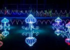 供应设计安装合作灯饰亮化工程,灯会产品