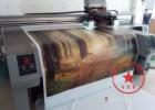 来料来图PVC印刷打印UV喷绘打印 彩色印刷加工欢迎来电咨询