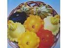 飞碟瓜种子 观赏玩具南瓜种子