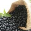 进口巴西黑豆批发  质量好 价格优 批发价2500元/吨