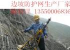 雅安防护网主动防护网被动防护网四川厂家直销