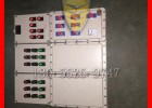 生物化工專用BXG類型防爆控制箱
