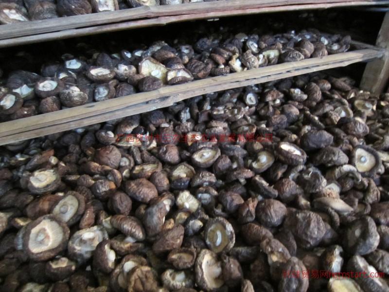 优质香菇基地直供21/斤