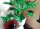 绿植租摆、批售、鲜花、立体花墙、绿化工程、养护