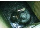 天津开发西区专业沉淀池清理 管道清洗