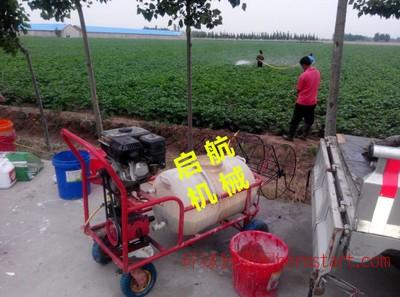 手推式汽油喷雾器 高效率自走式打药机 排灌机械