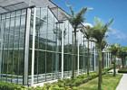 温室大棚搭建工程,寿光金星专业度高