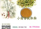 小茴香提取物含量10:1厂家直销浩洋生物