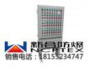 精品不锈钢防爆防腐系列/BSG-T系列防爆防腐配电柜