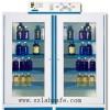 法国原装进口 净气型试剂柜AF4-2X