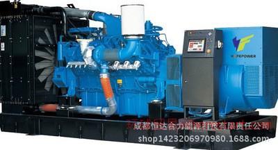 5KW沼气/燃气发电机组 100立方沼气池 品质保证