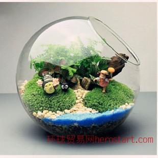 微景观 创意礼品透明圆形斜口玻璃花瓶 苔藓瓶 多款可选