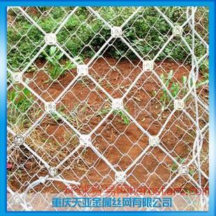 重庆筛网 优质国标GPS2柔性主动边坡防护网 SNS山体柔性防护网