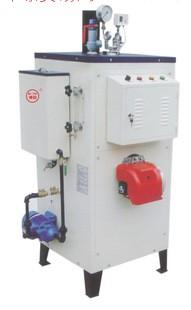 生物质蒸汽发生器 蒸汽锅炉 燃油 燃气