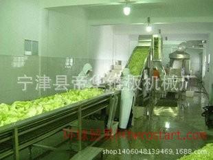 各种蔬菜食品清洗机 环保自动食品清洗机