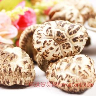 食品厂家批发 农家野生椴木花菇 根短肉厚干冬菇 绿色食品干香菇