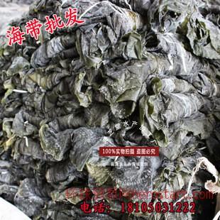 霞浦一级干海带 厂家直供优质散装海带 打捆 标准装海带