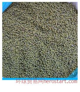 产地直销东北特产绿豆杂粮 非转基因绿色食品 豆芽豆浆专用