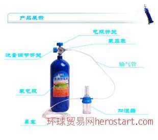 腾达15L便携式医用家用氧气瓶供氧器