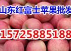 纸袋红富士苹果产地批发价格便宜质量保证