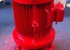 XBD-L型立式消防泵,消防稳压泵