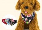 趣逗派宠物用品OEM定制生产和服三角巾