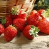 西部优质绿色农产品供应商-草莓供应