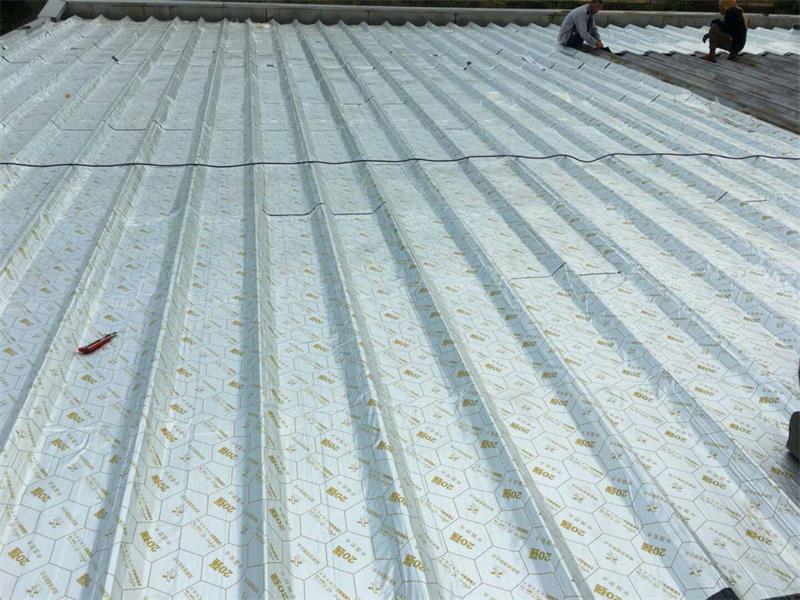 鹤壁天信野麦龙彩钢瓦屋面漏水专用防水卷材