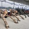军事主题射击游乐场  靶场模拟射击设备 儿童游艺气炮