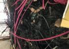 清溪厂房废料 各种库存电路板承包 服务站点