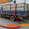 车载软管吸粮机 玉米上料软管绞龙输送机