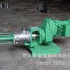 G30-1不阻塞浓浆单螺杆泵