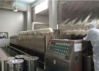 隧道式腰果烘烤机 微波设备连续生产效率高