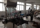 厂家定制YS-10A 口服液联合清洗机