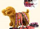 趣逗派宠物服装OEM定制厂家宠物条纹印花牵引绳两件套