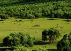 鹅贝贝牧场养殖类游戏系统开发牧场理财模式定制开发