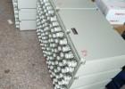BJX-12/8户外铸铝防爆端子箱