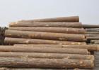 进口木材到国内的报关流程