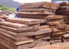 进口木材到青岛的报关公司