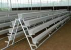 环保pvc草莓槽/优质草莓立体栽培槽