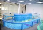 萌貝灣嬰兒游泳館設備加盟全國嬰兒游泳館鋼化玻璃游泳池設備廠家