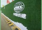 北京围挡绿化仿真草坪搭建实施办法