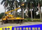 广告安装 物业维修 剪树枝等用高空车