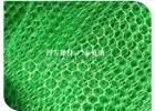 三维植被网,三维网垫植草护坡,三维土工网垫厂家选山东泰安