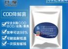 COD去除菌种微生物细菌厌氧好氧耐低温菌剂污水处理专用菌种