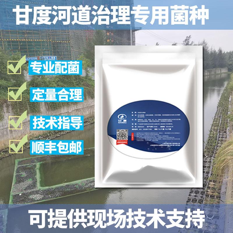 甘度枯草芽孢杆菌污水处理菌种河道治理黑臭水体菌种去COD氨氮